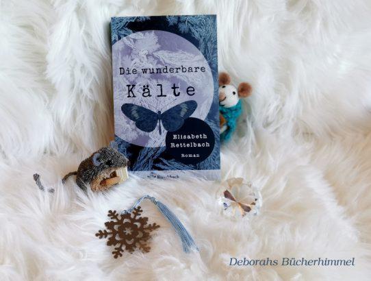 Elisabeth Rettelbach - Die wunderbare Kälte